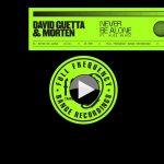 """David Guetta lança a eletrônica """"Never Be Alone"""" em parceria com Aloe Blacc"""